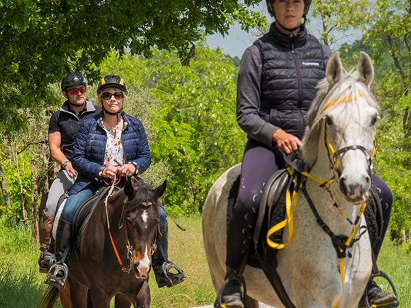 Authentic Experiences Umbria Horseback riding
